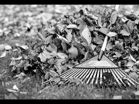 Heintje Simons  Wenn im Herbst die Blätter fallen  1974