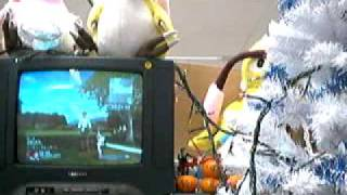 Phantasy Star Universe Partner Machinery Demonstration (December 2005 Sonic Team Live Stream)
