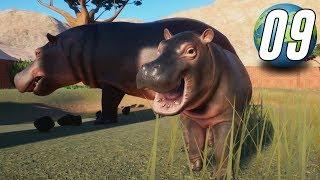 Planet Zoo Franchise - Part 9 - BABY ANIMALS EVERYWHERE