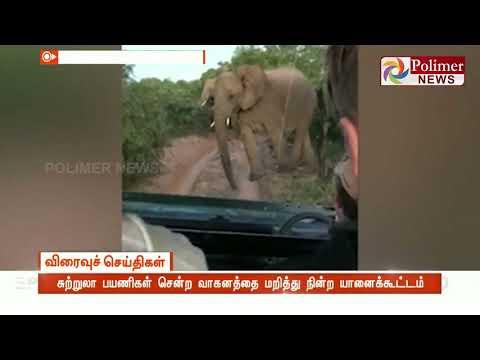 சுற்றுலா பயணிகள் சென்ற வாகனத்தை மறித்து நின்ற யானைக்கூட்டம்  விரலால் சொடுக்குப் போட்டு யானையை எச்சரித்த ஓட்டுநர்  Watch Polimer News on YouTube which streams news related to current affairs of Tamil Nadu, Nation, and the World. Here you can watch breaking news, live reports, latest news in politics, viral video, entertainment, Bollywood, business and sports news & much more news in tamil. Stay tuned for all the breaking news in tamil.  #PolimerNews | #Polimer | #PolimerNewsLive | #TamilNews | #PolimerLive | #PolimerLiveNews | #PolimerNewsLiveinTamil | #TamilNewsLive | #TamilLiveNews  ... to know more watch the full video &  Stay tuned here for latest news updates..  Android : https://goo.gl/T2uStq  iOS         : https://goo.gl/svAwa8  Polimer News App Download : https://goo.gl/MedanX  Subscribe: https://www.youtube.com/c/polimernews  Website: https://www.polimernews.com  Like us on: https://www.facebook.com/polimernews  Follow us on: https://twitter.com/polimernews   About Polimer News:  Polimer News brings unbiased News and accurate information to the socially conscious common man.  Polimer News has evolved as a 24 hours Tamil News satellite TV channel. Polimer is the second largest MSO in TN catering to millions of TV viewing homes across 10 districts of TN. Founded by Mr. P.V. Kalyana Sundaram, the company currently runs 8 basic cable TV channels in various parts of TN and Polimer TV, a fully integrated Tamil GEC reaching out to millions of Tamil viewers across the world. The channel has state of the art production facility in Chennai. Besides a library of more than 350 movies on an exclusive basis , the channel also beams 8 hours of original content every day. The channel has extended its vision to various genres including Reality. In short, Polimer is aiming to become a strong and competitive channel in the GEC space of Tamil Television scenario. Polimer's biggest strength is its people. The channel has some of the best talent on its rolls. A clear vision backe