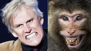 24 celebrity resemblance in animal style