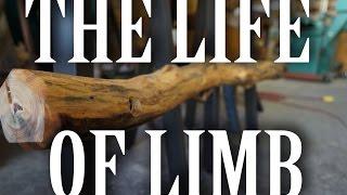 The Life Of Limb