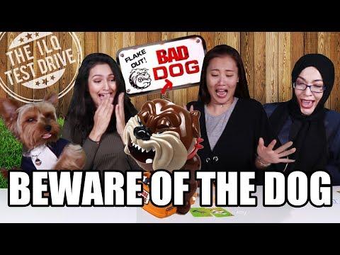 [ILQ Test Drive] Don't wake up the Bad Dog!