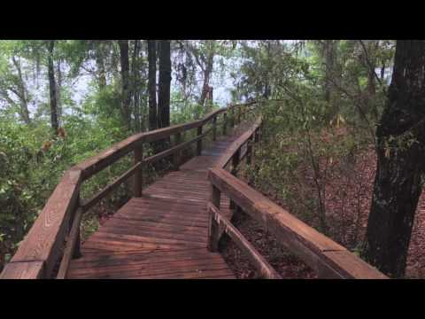 Halls Landing Campground, Park, And Boat Ramp. Lake Talquin, Tallahassee, Florida In  Leon County