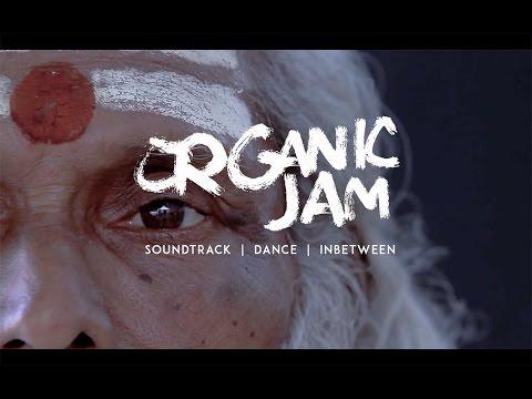 Carlo & the Organic Jam Clip 1 Sternberg Clarke - Live at Diwali Festival