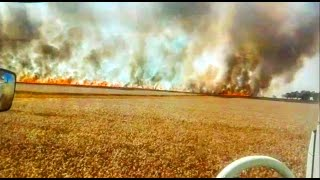 Ogromny pożar w Żarach!   Żniwa na Dolnym Śląsku!