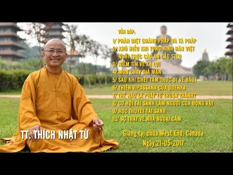 Vấn đáp: Phân biệt chánh pháp và tà pháp- Khó hiểu khi tụng kinh Hán Việt - TT. Thích Nhật Từ