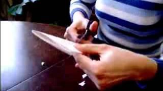 pahuljica od papira