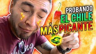 ME QUEMÉ LA LENGUA 🔥 COMIDA #MEXICANA 🇲🇽PARTE 2 🌮🌯EL #CHILE MAS #PICANTE DEL MUNDO🔥
