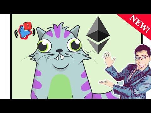 ETHEREUM incrementará su PRECIO 2018?:  CRYPTO GATITOS, PERRITOS Y ZOMBIES - Crypto Flash NOTICIAS
