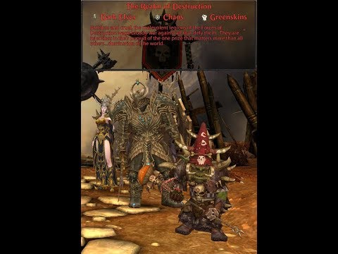Warhammer Online: Return of Reckoning – Destruction Classes