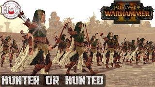 Hunter or Hunted - Total War Warhammer 2 - Online Battle 241