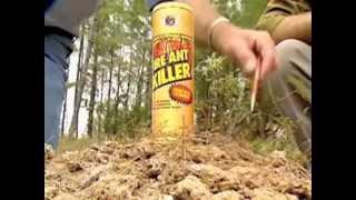 Organic One Fire Ant Killer