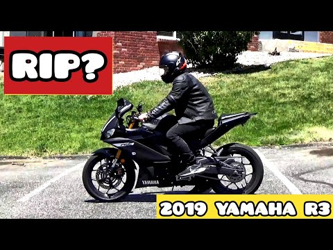 2019 YAMAHA R3 CRASH AFTERMATH | DAMAGES | FIRST BIKE | BEGINNER  | WILL SHE MAKE IT?