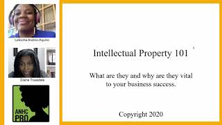 Intellectual Property Law 101