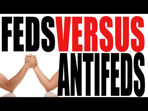Federalists vs Anti-Federalists in Five Minutes