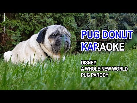 Pug Karaoke - A Whole New World (Pug Parody)