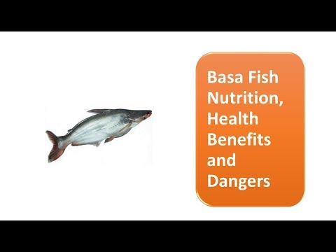 Basa Fish Nutrition, Health Benefits and Dangers