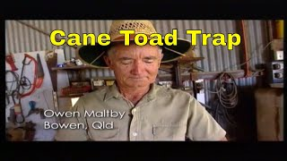 Cane Toad Trap...backyard invention .