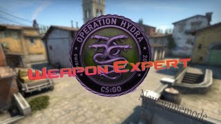 WEAPONS EXPERT *NEW GAMEMODE -CS: GO