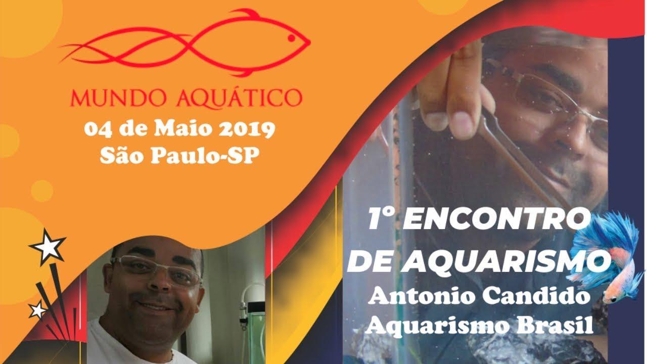 EVENTO MUNDO AQUATICO ANTONIO CANDIDO AQUARISMO BRASIL