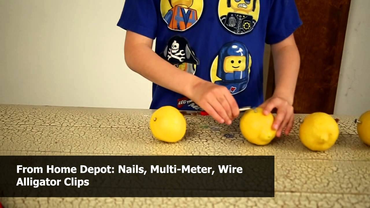 How To Light A Bulb With Citrus Fruit Science Fair Experiment 9 Circuit Diagrams Youtube