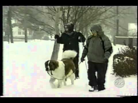 Mike Seidel ABC World News Now Blizzard of 2003 2-17-2003