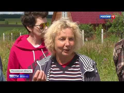 Репортаж Вести о массовой гибели пчёл в Зарайске