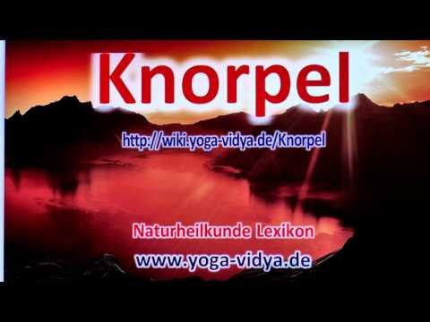 Knorpel
