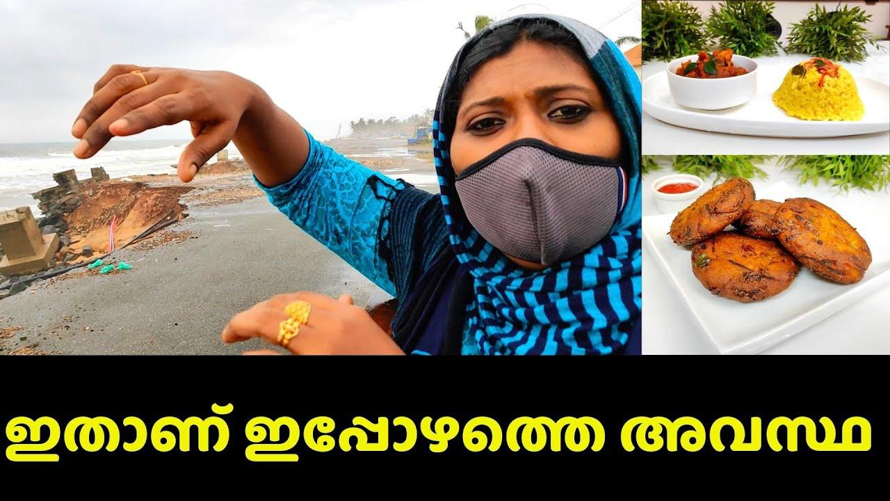 ഞാൻ ഒരിക്കലും കാണരുതെന്ന് കരുതിയ ആ കാഴ്ച   Day Vlog plus Lunch & Evening Snack   Salu Kitchen