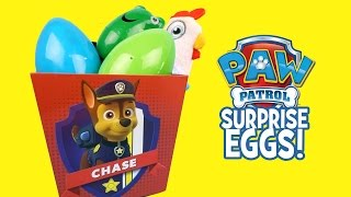 Paw Patrol Surprise Eggs Bucket with Paw Patrol Toys | Surprise Eggs Video by KidCity