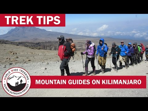 Climb Kilimanjaro with the Best Guides on the Mountain! | Trek Tips