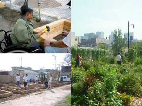 Urban Agriculture Projects in the Chicago Area