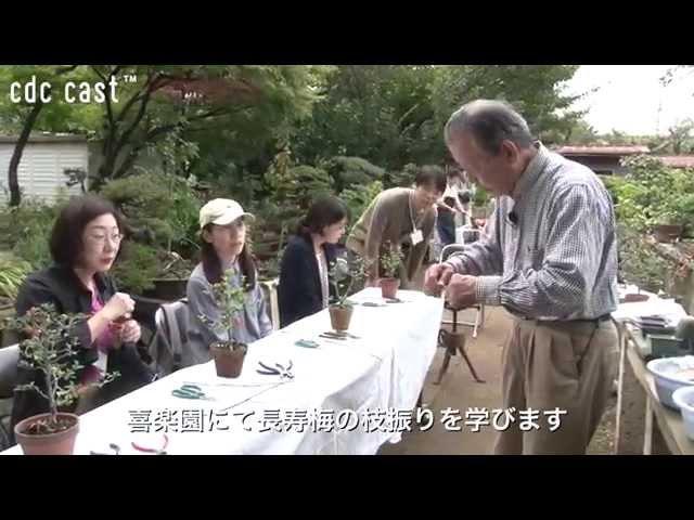 workshop – 植物との対話 ~盆栽をはじめてみませんか?~第2回