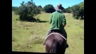 BITLESS HORSEBACK RIDING 2014 S.E.V.S URUGUAY  Santuario Equino Villa Serrana