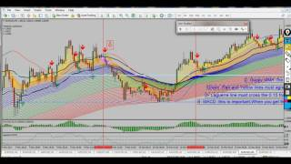 Strategy Scalping NVTForex- How To 5 min Trend Follower System