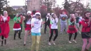 Freshmen Council Style - Jingle Jog ISU