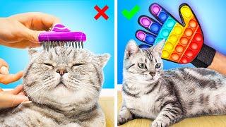 16 лайфхаков для животных Идеи для котов и собак