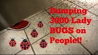 Dumping THOUSANDS of BUGS on Sh*ting People! (BATHROOM PRANK)