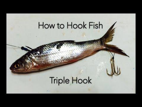 How To Hanging Treble Hook On Fish - DIY Fishing Tips - Cá Mồi Với Móc Ba