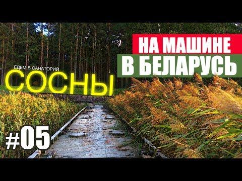 Беларусь | ТЦ Галерея Минск | Еда в Минске | Едем лечиться в Мядель | Санаторий Сосны | Жизнь ЯрЧе