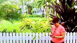 Moorings Village & Spa Review - Bloodline's Rayburn Inn - Islamorada, FL