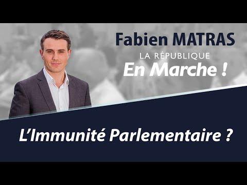 A propos de l'immunité parlementaire et de la situation de Marine Le Pen - Fabien Matras 2017