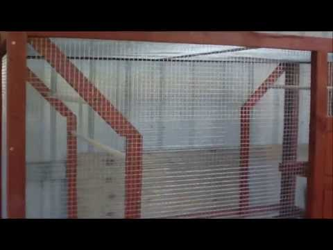 How to build a bird aviary