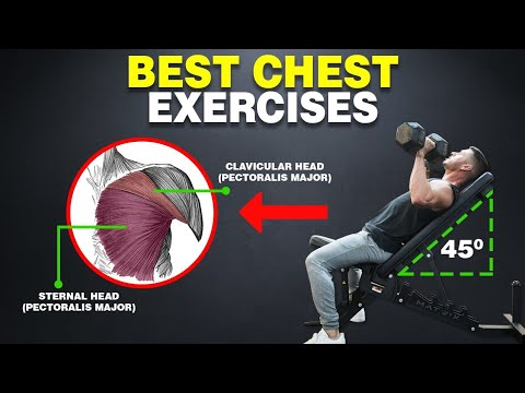7 Best Chest Exercises for BIGGER PECS
