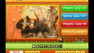Ответы на игру Угадай животных  261 280 уровень