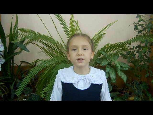 Изображение предпросмотра прочтения – ЕкатеринаЖидких читает произведение «Закон доброты» Е.И.Андреевой