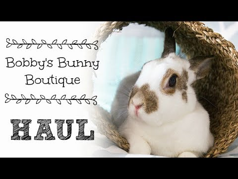 Bobby's Bunny Boutique Haul | Willow & Ollie Cuteness