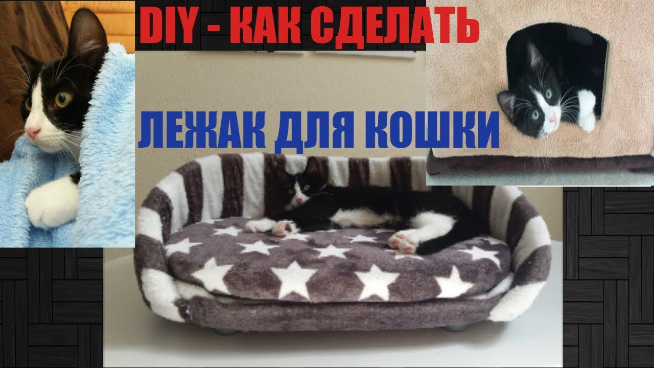 Как самому сшить лежанку для кошек фото 342