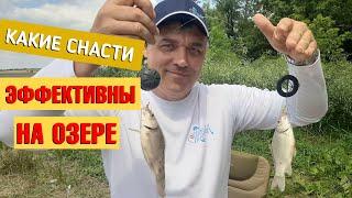 На какие снасти ловить в прудах и озёрах Рыбалка в Карналиевке